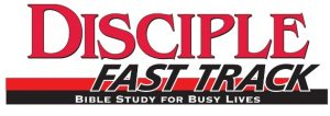 Discpile Fast Track